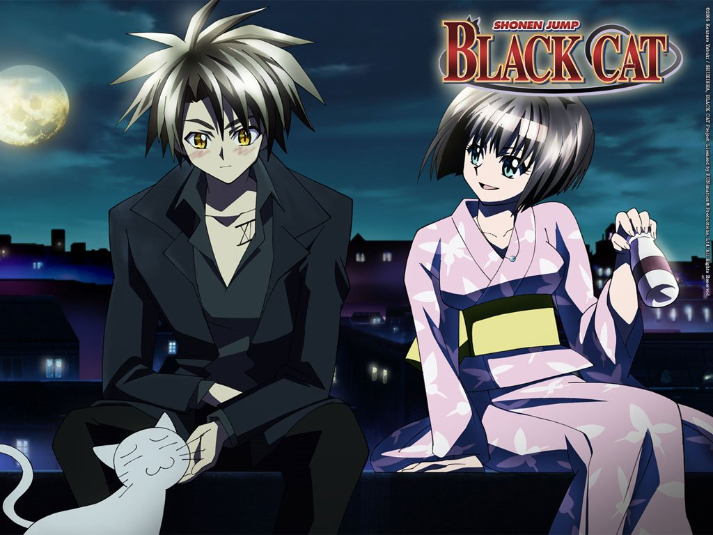 Black Cat Manga