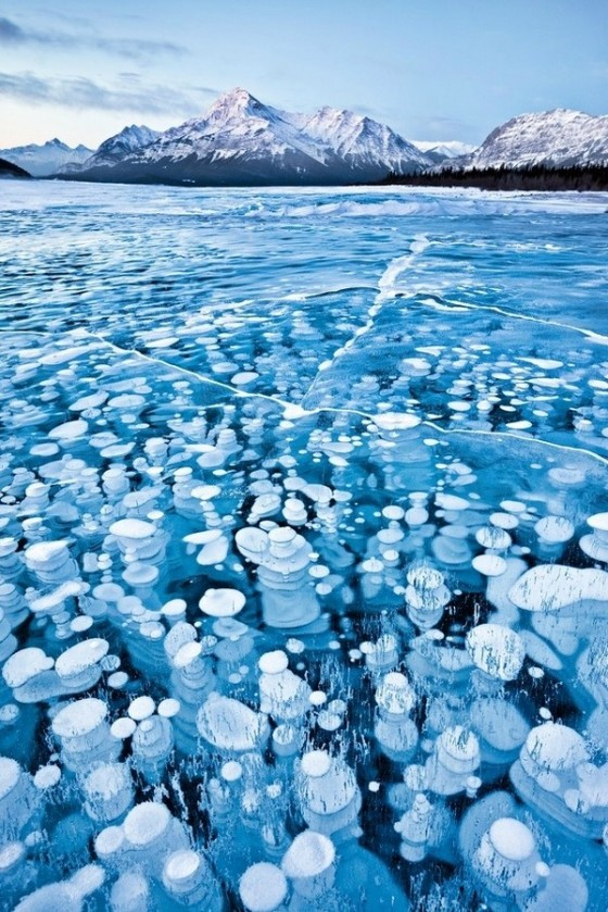 Frozen Bubbles photo creddit Emmanuel Coupe