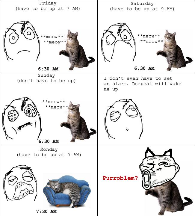 Troll-Cat
