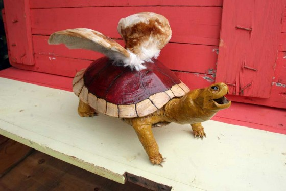 Koopa Paratroopa Taxidermy