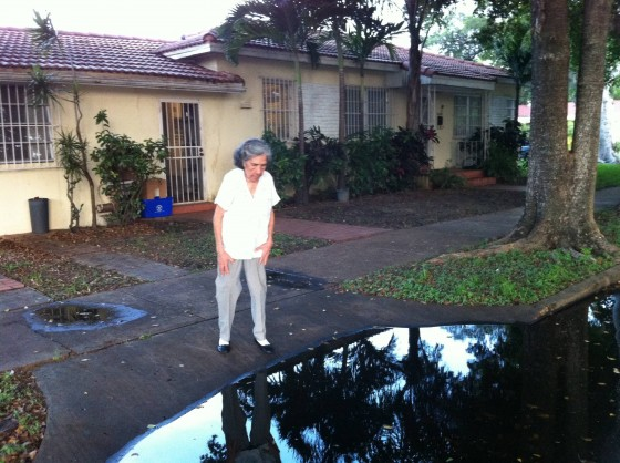 "My grandmother called the city of Miami to report a drainage problem in front of her house. The city worker told her ""Put it on the Internet otherwise nobody will do anything"". She's 90."