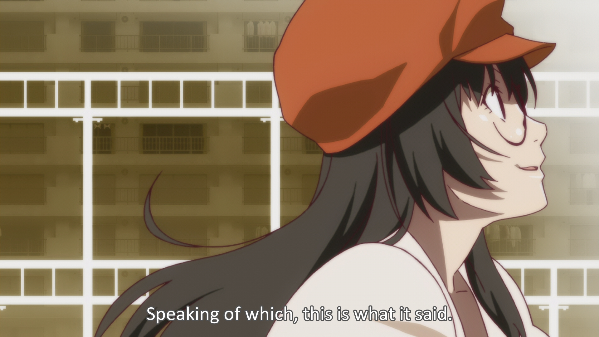 Bakemonogatari Episode 13 002