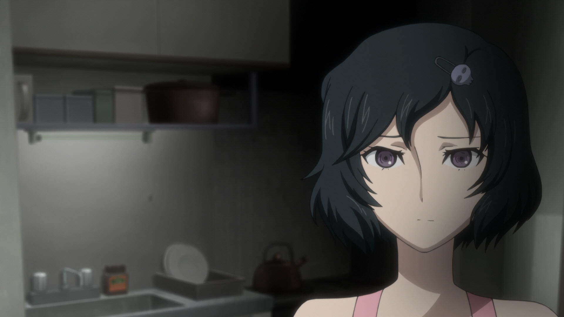 Steins Gate Episode 8 Chaos Theory Homeostasis I 16